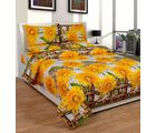 Best Deal Double Bed Sheet With Pillow Cover Cottonwa0029, multicolor