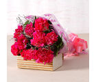 Giftacrossindia Lovely Pink Carnations Bouquet (GAIMPHD0512), 1000 gms