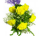 Giftacrossindia Six Yellow Carnations Bunch (GAIMPHD0575), 1000 gms