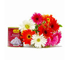 Giftacrossindia Colorful Ten Gerberas Bouquet with Rasgullas (GAIMPHD0379), 1000 gms