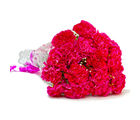 Giftacrossindia Beautiful Fifteen Pink Carnations Bouquet (GAIMPHD0042), 1000 gms