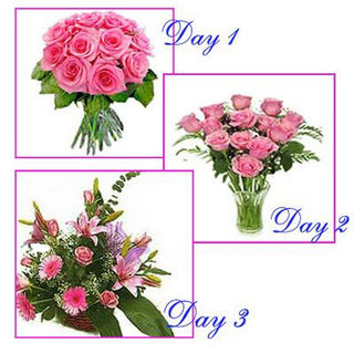 BAF 3 Days Surprises Everyday Gift, Free Shipping
