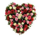 India Gifts Hub Mixed Roses Heart 40 Flowers (IGHFLOW072)