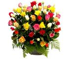 India Gifts Hub 50 Mix Roses Basket (IGHFLOW071)