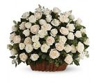 India Gifts Hub White Roses Basket 50 Flowers (IGHFLOW063)